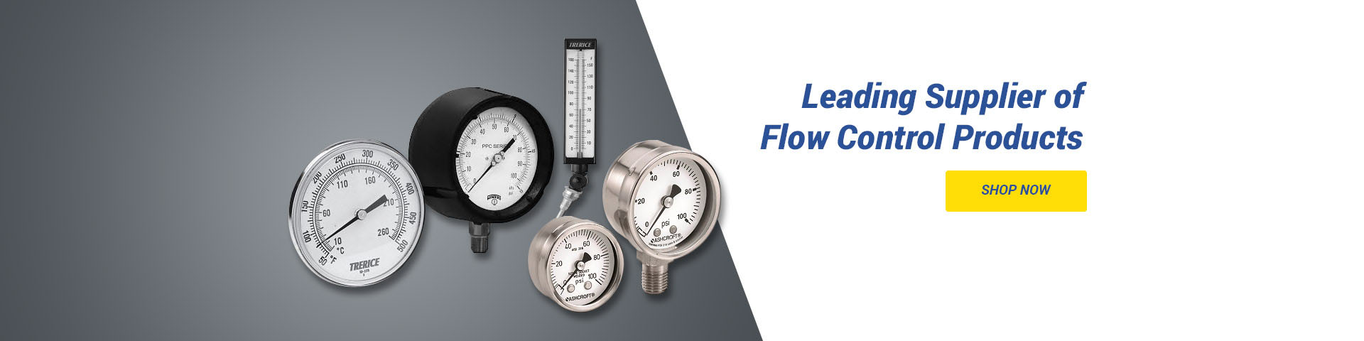 Leading Supplier of FLow Control Products